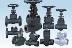 Forged Steel Valve A105N